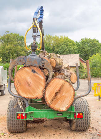 Heavy trailer fully loaded with large tree trunks. Stock fotó - 155373803