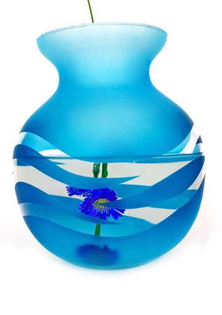 Dark blue vase with water. Transparent. Inside a dark blue flower