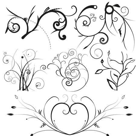curls: illustration drawing of floral frame