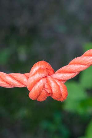 node: rope with a node, close up