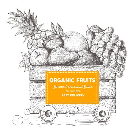 Fast delivery of fresh fruits. The box on wheels with fruits. Delivery of organic food. Conceptual image, drawn in ink Stock Vector - 69995039