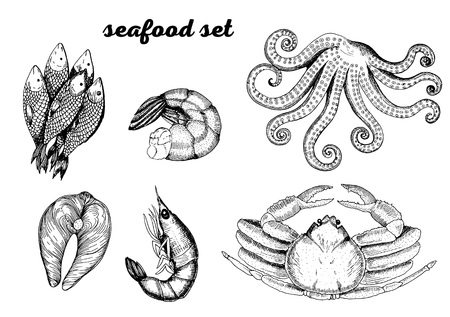 Sketch set of seafood. Hand drawn illustration Illustration