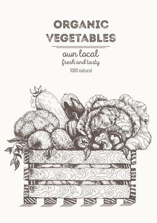 Fresh vegetables in basket illustration. Natural farm food. Drawn in ink