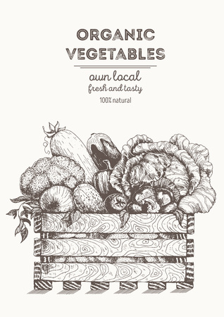 Fresh vegetables in basket illustration. Natural farm food. Drawn in ink