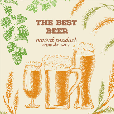 Vector template illustration of beer. Raw material for brewing: branch of hops and ears of barley. Card design. Illustration