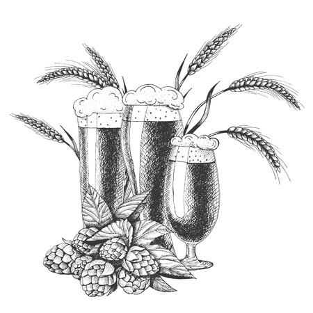 Vektorillustration des Bieres. Rohmaterial zum Brauen: Zweig von Hopfen und Gerste. Pub-Menü. Bier gesetzt.