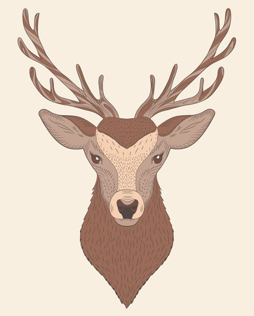 Isolated portrait of a deer vector illustration