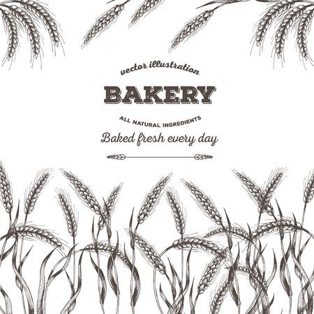 Bread design template. Vector illustration hand drawn.