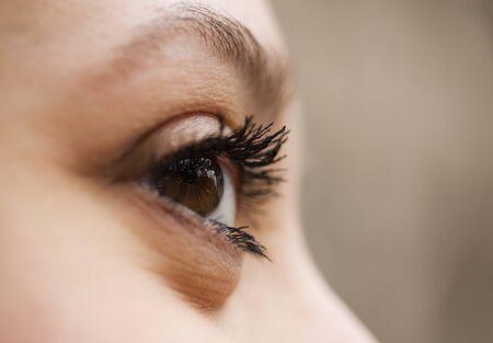 Schöne braune Augen einer Frau, close up, Makro