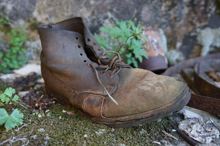 Old shoe in the nature Stock Photo