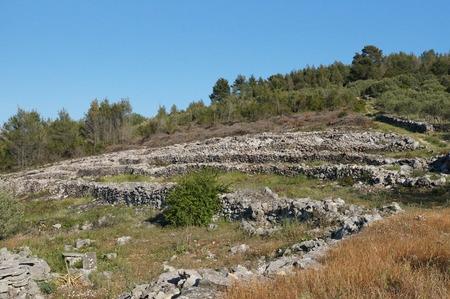Dalmatian Landscape