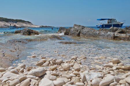 Proizd - Bili boci - Donji bok Editorial