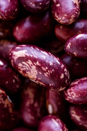 haricot: Red Haricot beans close up