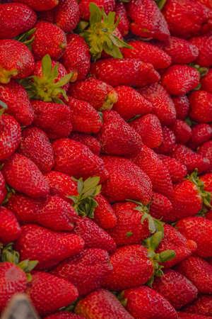 boqueria: Fruits and vegetables stall in La Boqueria, BARCELONA (SPAIN) Stock Photo