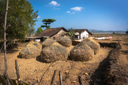 Typical hayloft in India. Haystack and farmers house. The life of the poor people in villages in India.