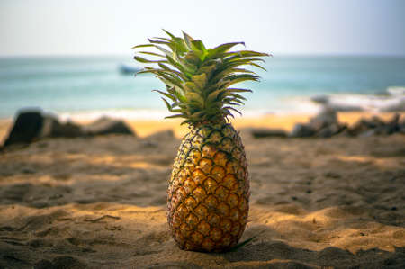 Beautiful natural still life of pineapple on the Golden sand in the shade of palm trees on the sea background.