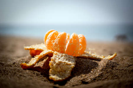 Opened the Mandarin in the sand. New year and Christmas in some exotic warm country by the sea. Stock Photo