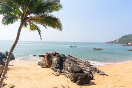 Palma and the beach with stone on sea background. Paradise beach Gokarna India.