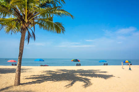 beautiful landscape with palm tree, white sand and sun loungers on the background of sea and blue sky. Kerala, India. Vacation in exotic country.