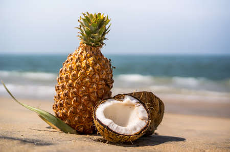 fresh pineapple and coconut in a tropical landscape. The coconut is broken down into 2 half lying on the sand on the sea background