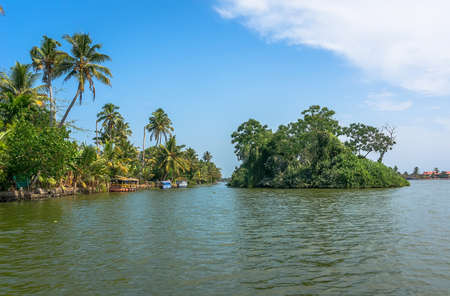 backwater: Beautiful water of the Indian landscape in Kerala with palm trees, blue skies and turquoise water. Channels in the Indian Venice of Alleppey.
