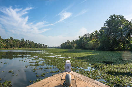 shipway: The nose of the boat floating on the river overgrown with green plants. The beautiful landscape of the backwaters in Alleppey Kerala, India
