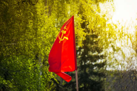 humanismo: flag of the Soviet Union develops on the background of green trees. flag of the USSR on Festive demonstration November 7 of the October revolution. The day of victory in the great Patriotic war.