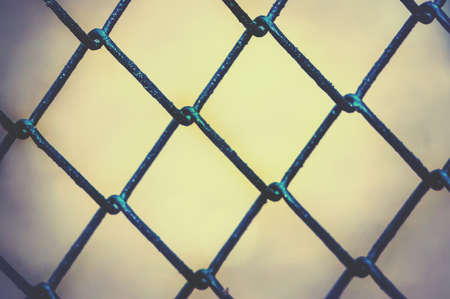 wire mesh: A metal grid on the blurred background. Cage at the zoo.