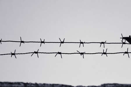 dangerous barbed wire to demarcate the prison camp black and white effect Stok Fotoğraf - 82991270