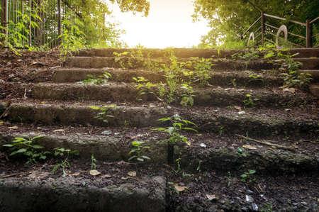 Old abandoned stone staircase in park. summer. in bright sunlight Stock Photo