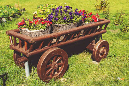 Wooden cart on green grass with blooming flowers in different colors. The courtyards in the cities of Russia Stock Photo