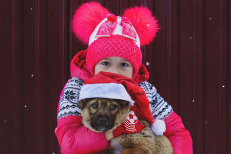Little girl and dog at Christmas. Cap of santaclaus on the dog. A symbol of Christmas and the new 2018. A puppy with a sad face. Girl hugs your pet in the open air under the snow.