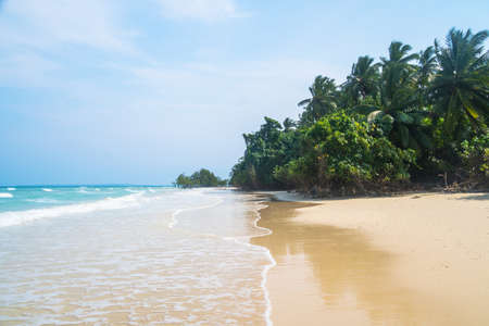 Beautiful beach. Beautiful tropical island. Andaman and Nicobar Islands. India. White wet sand as a mirror with reflection of trees on it