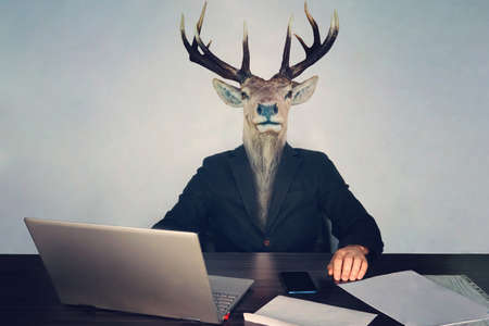 male business man with deer head on a blue background in the office at the Desk. concept of irrational management. stupid employees and employees in the company and morons deputies in the government.