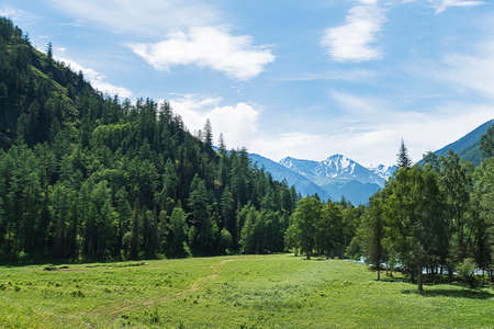The landscape of Altai mountains with North-Chuya ridge in background, in summer, Siberia, Altai mountain Republic, Russia. Stok Fotoğraf