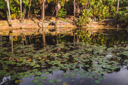 Emerald Pool or Emerald Lake, nature swamp in beautiful green blue lagoon water pond in the forest amazing travel. Shot From Ross Island