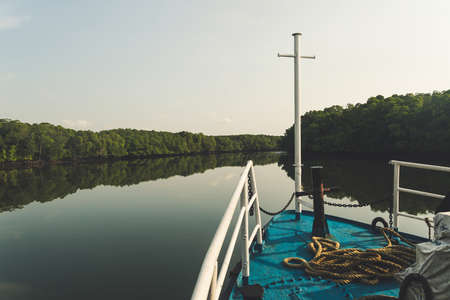boat floats on a narrow canal of mangrove trees chelb. Boat ride getting out of a mangrove green water canal. Andaman and Nicobar Islands. India