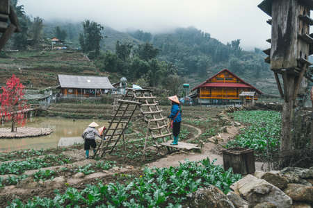 two women are working in the garden in CatCat village, Vietnam. Rural life of the Vietnamese hinterland. Hard agricultural work. Stock Photo