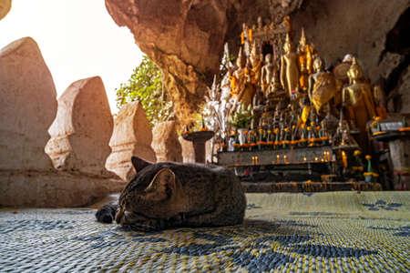 Pak Ou Cave on the Mekong River near Luang Prabang, Laos... cave of 5000 Buddhas