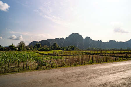 Agricultural activities in the hinterland of Laos. The orchards and fields with mountains in the background.