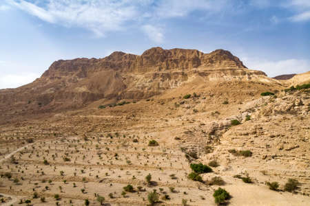 Red mountain in Ein Gedi National park, Israel. Agricultural plantation in an oasis in the Desert. High cliff on the background of the cloudy sky. Wallpaper. rural, rustic,