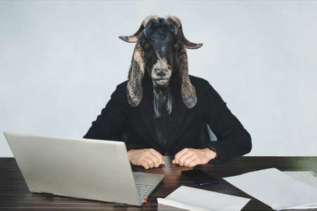 male businessperson or worker coder with head of a black goat on a blue background in the office at Desk. A malicious employee. The concept of aggressive government or officialdom. An evil official. Stockfoto