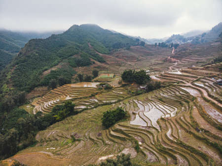 Vietnam, Sa Pa, Rice fields in fog. Top view, aerial view. Beautiful natural landscape of Southeast Asia. Imagens