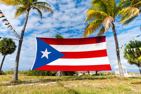 puerto rico Flag Among Palm Trees. Puerto Rican flag against tropical palm trees and blue sky. Beautiful tropical landscape on the background.