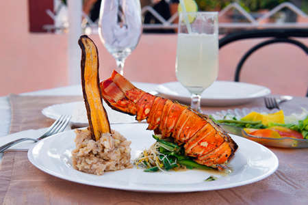 Grilled lobster is beautifully placed on a plate along with a side dish of mashed potatoes, fried banana, vegetables and rice and a glass of cocktail. Expensive dinner at a restaurant Banco de Imagens