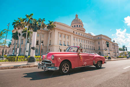 November 26, 2019, Havana, Cuba: Old classic American pink car rides in front of the Capitol. Retro convertibles are used as taxis to transport tourists in Cuba.