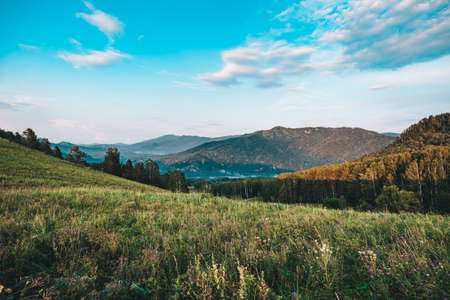 Top view on an empty the hills. Cloudy summer day. Beautiful landscape of Altai mountains with grass and forest. Altai Republic, Russia.
