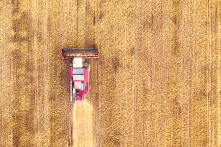 Aerial view drone of harvest field with tractor mows dry grass. Autumn yellow field with a haystack after harvest top view. Harvesting in the fields. Stock up on hay for the winter. Top view.