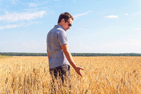 Wheat grains in a farmers hands on the wheat field background. ripe ear in a mans hand. Cereal harvesting. Agricultural theme.