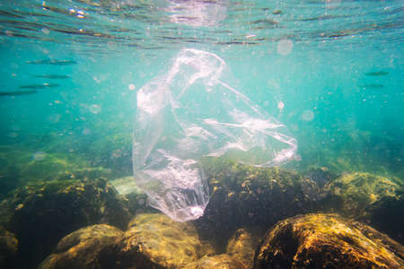 Plastic bag on corals in the tropical coral reef of the indian ocean. Bad ecology of sea water. environmental pollution. garbage under the water.